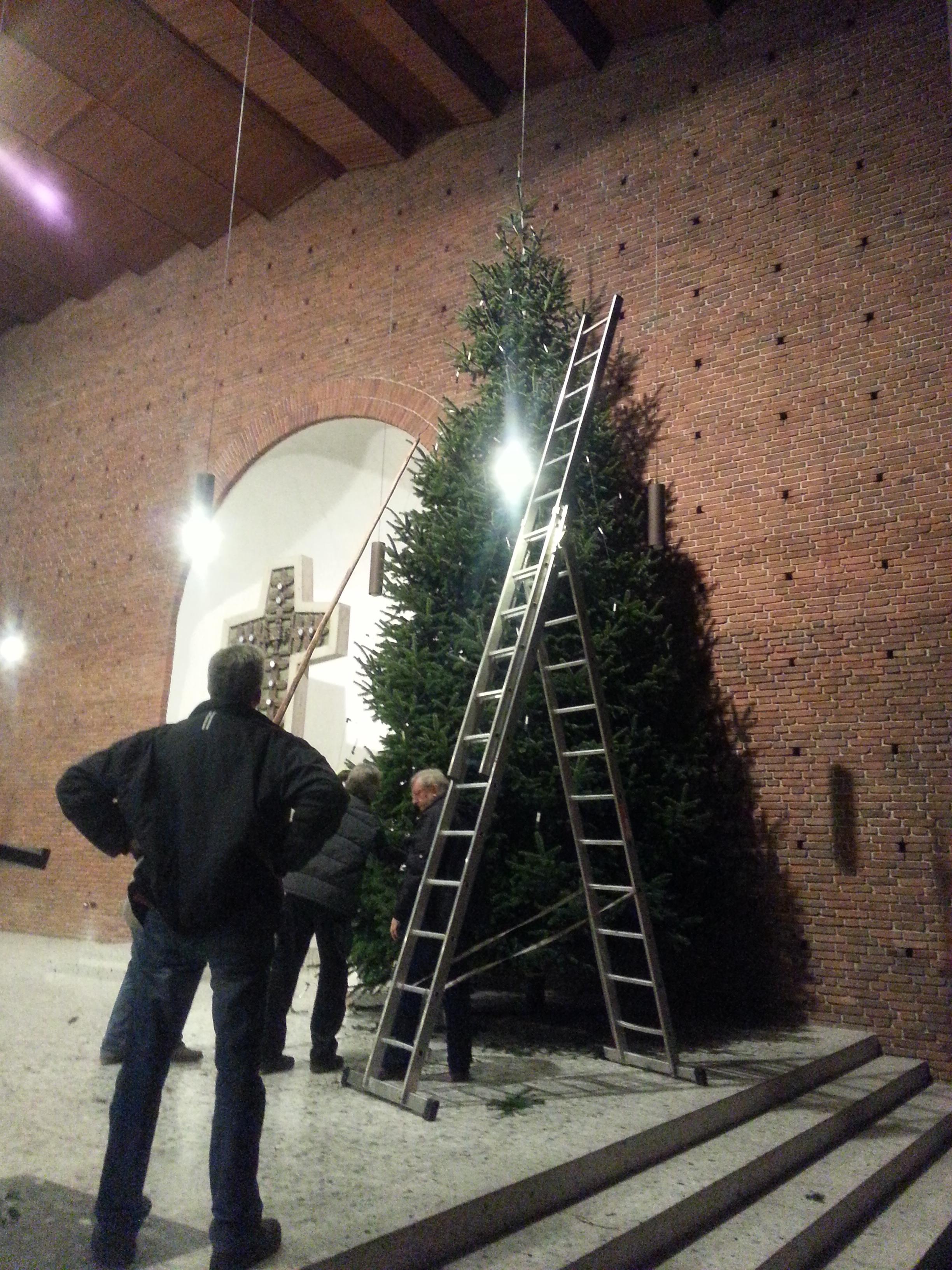 Größter Tannenbaum.Größter Tannenbaum Aller Zeiten Pfarreiengemeinschaft Herzlake Und
